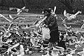 Watervogels worden bijgevoerd in het Amsterdamse Oosterpark, Bestanddeelnr 933-5602.jpg