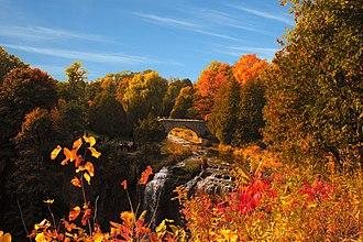 Webster's Falls - Image: Webster Falls Laslovarga 1