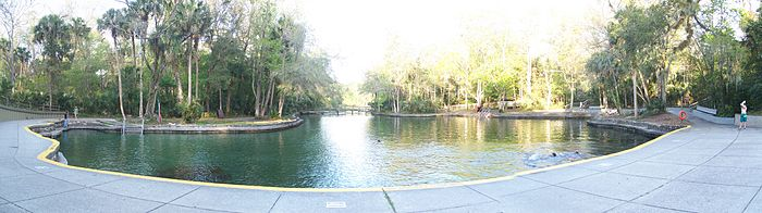 Swimming area at Wekiwa Springs State Park