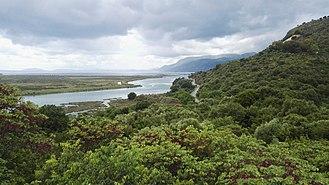 Butrint National Park - Typicall habitat along Lake Butrint and Vivari Channel.