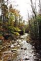 West Branch Mad River, West Branch Rd, Waterville Valley (494188) (11917894683).jpg