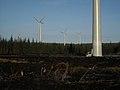Whitelee Wind Farm - geograph.org.uk - 1087949.jpg