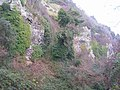 Whitlands Cliff - geograph.org.uk - 771366.jpg