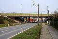Wildpretbruecke B111800.jpg