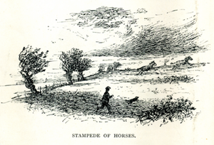William Gordon Stables Stampede.PNG