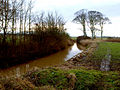 Winestead Drain - geograph.org.uk - 1635202.jpg
