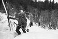 Winter bushwhacking, Chilkoot Trail (17098661241).jpg