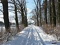 Winterlicher Kirchsteig - panoramio.jpg