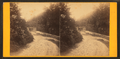 Wissahickon Lane, by Bartlett & French.png