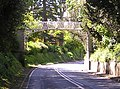 Wrought iron footbridge over A422 at Spetchley Gardens - geograph.org.uk - 12524.jpg