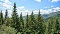 Yakoruda, Bulgaria - panoramio (20).jpg
