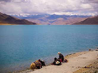Yamdrok Lake - A view of the serene Yamdrok Lake with a yak in the foreground