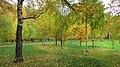 Yellow vs green. October 2014. - Жёлтый цвет разбавляет зелень. Октябрь 2014. - panoramio.jpg