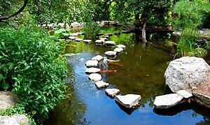Zilker Botanical Garden - Image: Zilker Botanical Jun 2008 02