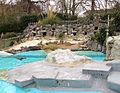 Zoo Koeln Pinguinanlage Spheniscus humboldti.jpg