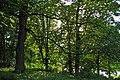 """""""Мала Софіївка"""" в Луці-Мелешківській DSC 4108.JPG"""