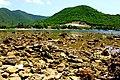 ¡Lástima de playa rocosa - panoramio.jpg