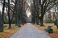 Ботанический сад, Минск - panoramio (25).jpg