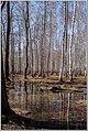 Весна на Южном Урале. - panoramio (5).jpg