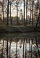 Вид на Церковь Зачатия Анны. Чехов, парк Усадьбы Гончаровых.jpg
