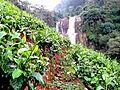 Водопад Рамбода - panoramio.jpg