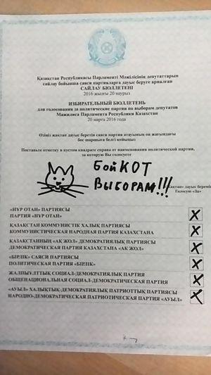 Spoilt vote - Spoiled ballot paper