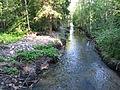 Канал с реки Колпанки..JPG