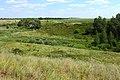 Овраг Березовый в северо-восточном направлении - panoramio.jpg