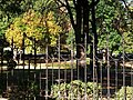 Ограда Лермонтовского сквера. Фрагмент.JPG