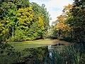 Осень в Мичуринском парке.jpg