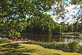 Пруд в парке Ораниенбаум.jpg