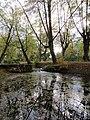 Самсониевский канал 3.jpg