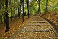 Стрийський парк, осінь 09.jpg