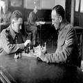 חיילים של הפלוגה ה- 14 של הבופס הארץ ישראלי במועדון שלהם במשחק שחמט . ( 1941) -PHG-1005477.png