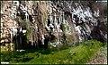 مرگ و زندگی - panoramio.jpg