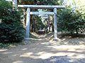 匝瑳市・生尾・老尾神社.JPG