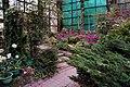 杉林溪藥花園 Shanlinxi Medicinal Herbs Garden - panoramio.jpg
