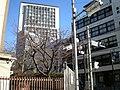 渋谷区東 - panoramio - kcomiida (1).jpg