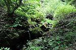 白岩の滝 - panoramio (13).jpg