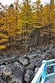 0134 - Nordkorea 2015 - Sinhuangsan - Fluss aus Stein (22547951967).jpg
