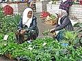 077 Marg'ilon Dehqon Bozori, mercat agrícola de Marguilan, venedores de plantes.jpg