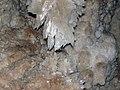 098 Macroxtalline gypsum speleothem, Old Granddad column 1 (8321128863).jpg