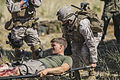 11th MEU practices casualty evacuation 140615-M-vz997-824.jpg