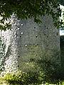 12 08-08 Château de Ranrouët 021.jpg