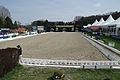13-04-21-Horses-and-Dreams-Karin-Kosak (19 von 21).jpg