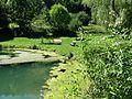 132 Landschaftsschutzgebiet bei Schelklingen.jpg