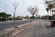 16-02-22-Playa-de-Muro-Mallorca-RalfR RR26398.jpg