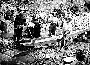 California Gold Rush - Prospectors working California gold placer deposits in 1850
