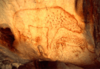20,000 Year Old Cave Paintings Hyena.png