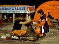 2008년 중앙119구조단 중국 쓰촨성 대지진 국제 출동(四川省 大地震, 사천성 대지진) SV400699.JPG